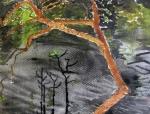 Brazil, Rionegro River - Watercolour on Paper