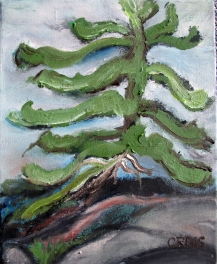 Canada-Pine at the Shore-Emerald Isle-Oil on Canvas-Finished Edges-(10X8)-NFS