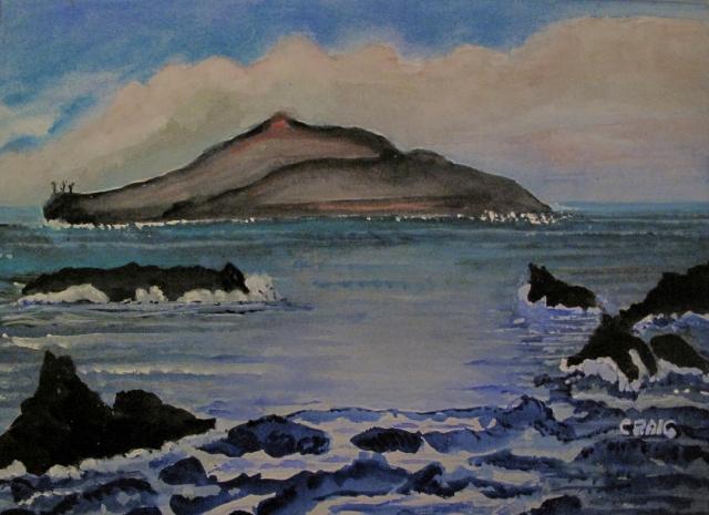 Chile-Robinson Crusoe Island-Watercolour-Framed-(8.5X11.5)-$125