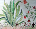 Jamaica - Aloe Vera - watercolour (7.5X9.5)