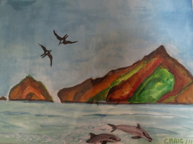 Marquesas-Birds and Dolphins Froucking-Watercolour-Framed-(8.5X11.5)-$150