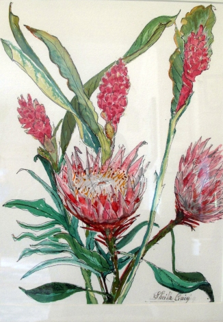 Hawaii-Alpinia-Tropical Bouquet-Water Color on Paper-Framed-(13.5X10)$300