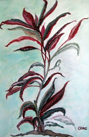 USA-Florida-Tropical Plant-Framed-(14.5X10)-$175