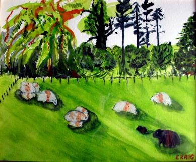 Wales-Field of sheep-Framed $140